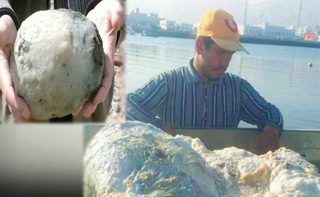 fisherman-becomes-instant-millionaire-after-finding-rare-whale-vomit